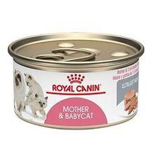 Comida Humeda Para Gatos Royal Canin Mother & Baby cat Wet 165 Gr