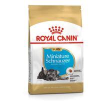 Royal Para Perros Canin Mini Schnauzer Puppy 1.13 Kg