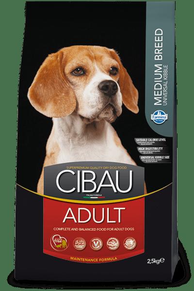cibau-adult-medium.png
