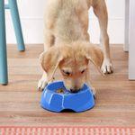 Comedero-Para-Perros-Alimentacion-Lenta-Azul-Talla-Xs