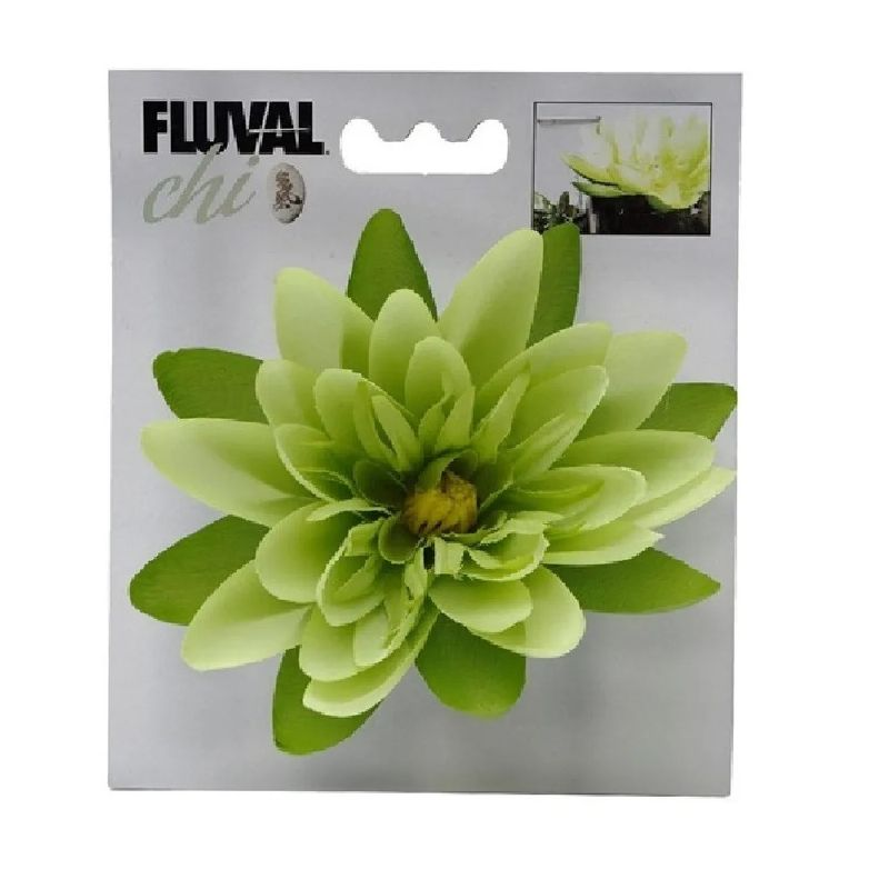 planta-decorativa-para-acuarios-flor-fluval