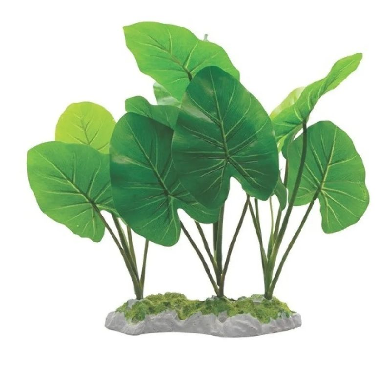 planta-decorativa-para-acuario-fluval-echinodorus-29-cm