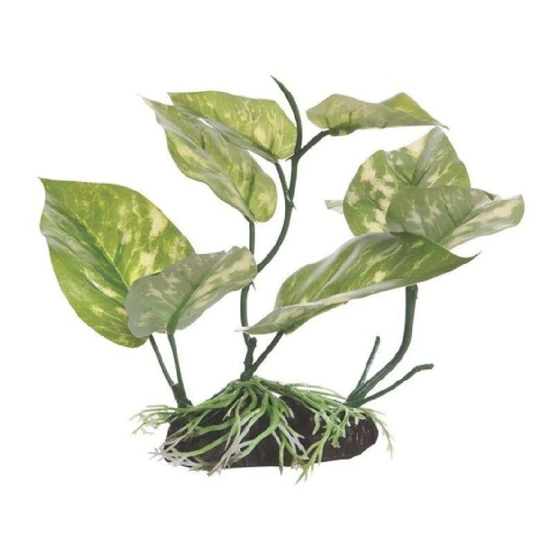 planta-decorativa-para-acuario-fluval-cola-de-lagarto-17-cm