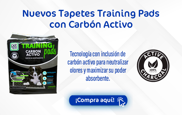 Tapetes carbon activo