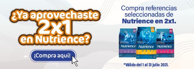 2x1 nutrience