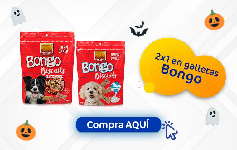 2x1 bongo